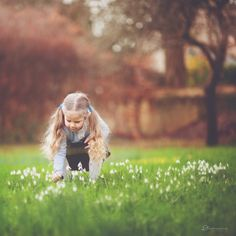 snowdrops | CMpro Daily Project