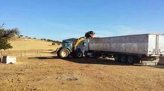 ENERGIAS RENOVABLES JUNTASOL: BIOMASA-EXPORTACION MADERA-ALMACENES