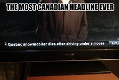 Funny pictures about Canadian headline. Oh, and cool pics about Canadian headline. Also, Canadian headline. Funny Cute, The Funny, Funny Tv Quotes, Funny Headlines, Meanwhile In Canada, Canadian Things, Lol, Laughing So Hard, I Smile