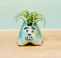 Small Jade Cat Ceramic or Pottery Animal Bowl for Succulents, Change, as a Vase or for Display Face Planters, Ceramic Planters, Planter Pots, Pottery Animals, Holding Flowers, Pottery Designs, Studio Art, White Clay, Art Studios