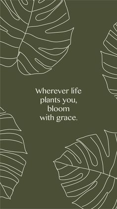 Free screensaver design by The Binding for The Essentials Club newsletter. Positive affirmation: Wherever life plants you, bloom with grace. Minimal, tropical inspired illustration and colour palette.