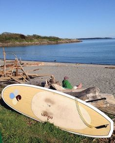 See 252 photos and 7 tips from 649 visitors to Willows Beach. Great Places, Beautiful Places, Standup Paddle Board, Meet Friends, Paddle Boarding, Surfboard, Spring, Beach, The Beach