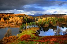 Tarns Hows in autumn, Cumbria, England by Malcolm Blenkey