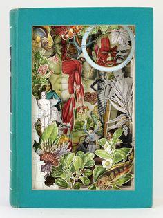 Book collage by Alexander Korzer-Robinson