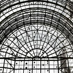 #lookingup at #glass and #light in the #wintergarden - TAGS - #nyc #newyork #newyorkcity #ny #explore #exploreeverything #wander #wanderlust #urbanexplorer #perspective #architecture #archilovers #architexture #archiporn #design #details #blackandwhite #bnw #bw #noiretblanc #jj_newyorkcity #jj #saturday #wtc by mackster23ny