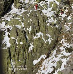 Un montañero fallecido al sufrir una caída en su ascensión al pico de la Mira, en Los Galayos (Ávila) - 20minutos.es