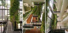 Green wall at Cecil Street designed by Tierra Design + POD - http://landarchs.com/green-wall-transforms-lifeless-building/