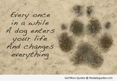 Dog Death Quotes | 21 Best Dog Death Quotes Images On Pinterest Pets Doggies And Frases