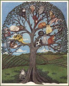 Great kitty tree!