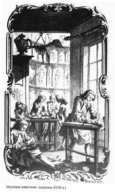 """Albrecht von Haller, """"Vivesection,"""" from """"Mémories,"""" 1756, frontispiece. Via Barbara Stafford's """"Body Criticism."""""""