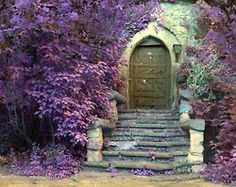 Antique exterior wood door with stone stairs and flowers. Adding antique wood doors to home interiors enhance the house design in vintage style, and make interior design and house exterior design feel harmonious and attractive. Sleeping Beauty Art, The Secret Garden, Secret Gardens, Wood Exterior Door, Building Exterior, Cool Doors, Unique Doors, Garden Gates, Garden Stairs