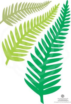 Best 11 11 long paper Fern leaves for your DIY paper flowers. Butterfly Template, Heart Template, Flower Template, Crown Template, Paper Leaves, Tissue Paper Flowers, Paper Butterflies, Owl Templates, Applique Templates