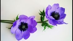 (1) How To Make Anemone Flower From Crepe Paper - Craft Tutorial ABC TV ABC TV - YouTube