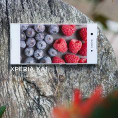 """Một Xperia XA1 """"cân"""" hết thư viện phim, ảnh và nhạc nhờ bộ nhớ trong 32GB, và có thể mở rộng bộ nhớ lên đến 256 GB với thẻ Micro SD. Thả ga lưu trữ tất thảy những gì bạn yêu thích nhé ;)   #XperiaXA1 #Xperia #TiênPhongCameraPhone … Xperia XA1 Giá bán: 6,490,000VND Chi tiết: https://www.sonymobile.com/vn/products/phones/xperia-xa1/ #fashion #style #stylish #love #me #cute #photooftheday #nails #hair #beauty #beautiful #design #model #dress #shoes #heels #styles #outfit #purse #jewelry…"""