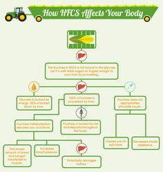 HFCS and your body