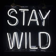 Stay wild in neon Words Quotes, Me Quotes, Sayings, Edgy Quotes, Hair Quotes, Badass Quotes, The Words, Light Up Words, Light Up Signs