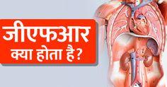 """जीएफआर यानि ग्लोमेरुलर फिल्ट्रेशन रेट (glomerular filtration rate) एक तरह की जांच है जो कि किडनी की कार्यक्षमता के बारे में बताती है। ग्लोमेरुलर फिल्ट्रेशन रेट को हिंदी में """"केशिकागुच्छीय निस्पंदन दर"""" के नाम से जाना जाता है। Causes Of Kidney Disease, India, Indian"""