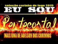 SELEÇÃO CORINHO DE FOGO 2015