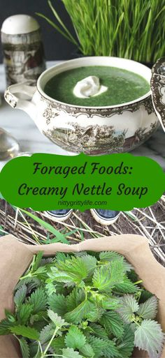 Foraged Foods Creamy