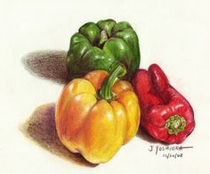 Colored pencil drawing of red, green, and red peppers