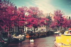 7. Amsterdam, The Netherlands. Top 10 Cities: The Rough Guide to 2016.
