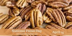April 14, 2016 – NATIONAL PECAN DAY – NATIONAL REACH AS HIGH AS YOU CAN DAY – NATIONAL DOLPHIN DAY – NATIONAL PAN AMERICAN DAY – NATIONAL EX SPOUSE DAY