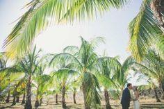 Maui wedding venue at Coco Palms, Maui. http://amauiweddingday.com