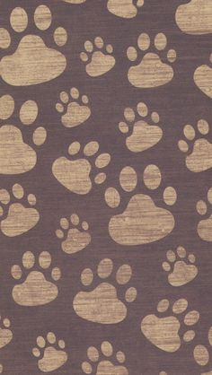 Paw Print Iphone Wallpaper