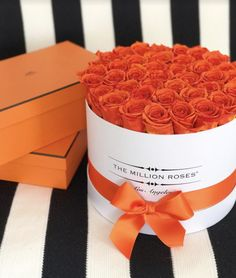 Carefully grown on our sun-drenched flower farm in Ecuador, our roses come together to withstand the test of time through our floral experts' technique and our engineered packaging. #themillionroses The Million Roses, Diy Room Decor Videos, Adore U, Birthday Cake Decorating, Orange Roses, Flower Farm, Classic Collection, Flower Arrangements, Beautiful Flowers