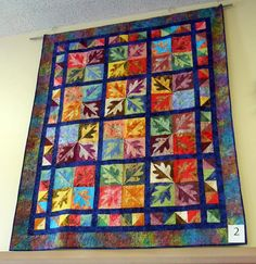The Kanawha Valley Quilters Guild and the Moon and Stars Quilters have 18 gorgeous quilts on display at the Main Library now through August. Come see them! Main Library, Come And See, Quilt Patterns, Maine, Display, Quilts, Blanket, Stars, Floor Space