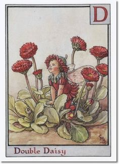 Flower Fairy by Cicely Mary Barker
