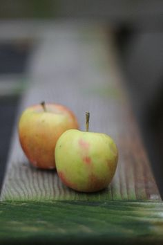 **Apples** Another fruit that you can find in the Ukraine are apples. They are easily accessible and one serving is one apple.