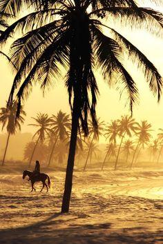 Brazilian beach   http://WWW.TRAVELSHARE.IT/