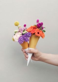 Flower Power /Quirky flower cones, a new way of giving a small cheap bouquet a beautiful twist. Flowers To Go, Beautiful Flowers, Wedding Flowers, Cream Flowers, Giving Flowers, Beautiful Bouquets, Wedding Bouquets, Bday Flowers, Ice Cream Flower