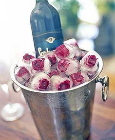 cubetti di ghiaccio con rose