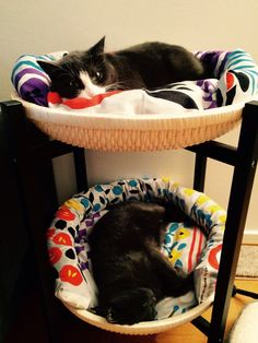 Cats enjoying their DIY bed from IKEA tray table (TRENDIG 2013) with cushions from Marimekko heavyweight cotton fabric.