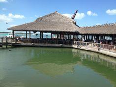 Islamorada Fish Company And Market in Islamorada, FL