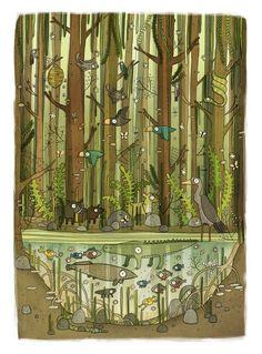 Brendan Kearney - Illustration and design: Mangrove Swamp: