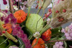 #physalis #Asclepia #MobyDick #Symphocarpus #MagicalPride #Amaranthus #Cortederia; Flowers are available at www.barendsen.nl