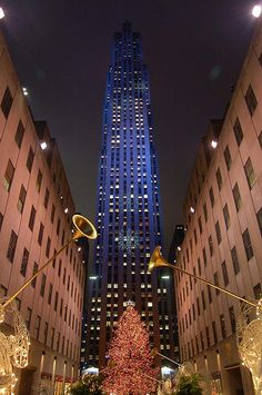 I want to visit the Rockefeller tree one day :)
