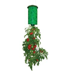 Topsy Turvy TT011112 Upside Down Tomato Planter (00740275000687) Features: Grows delicious, juicy tomatoes all season long Hang on deck, balcony, or patio Eliminates weeding, caging, and staking Just add your own plant and ordinary potting soil Also grows cucumbers, eggplants, herbs, and more Grow organic too Dimensions: 10-in. x 3.25-in. x 10-in. Weight: 1 lb. 6 oz. What's In The Box: Topsy Turvy TT011112 Upside Down Tomato Planter