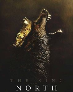 House Stark Game of Thrones king in the north House Stark, Casa Stark, Arte Game Of Thrones, Game Of Thrones Fans, Game Of Thrones Posters, Daenerys Targaryen, Cersei Lannister, Khaleesi, Valar Dohaeris