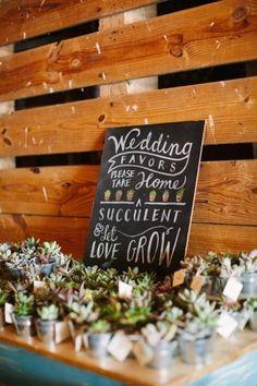 succulent wedding favors best photos - wedding favors  - cuteweddingideas.com