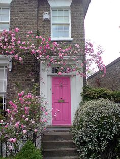 Pink door, pink roses. Roses over the door by Igor Clark