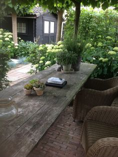 outdoor patio with pavers, wicker, old farm table, all that green!