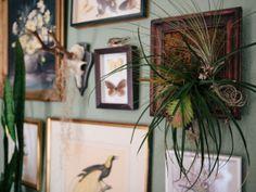 Matt & Kathy Allison | Our Gathered Home