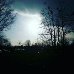 #photography#tree#sun#photo
