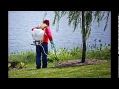 Weed Control Service   Lawn Care Maintenance   Weed Man 305 304 607