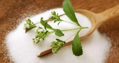 11 All-Natural Sweeteners You Can Grow in Your Backyard
