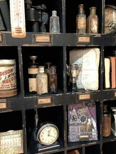 curio display of curiosities